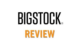 bigstock review